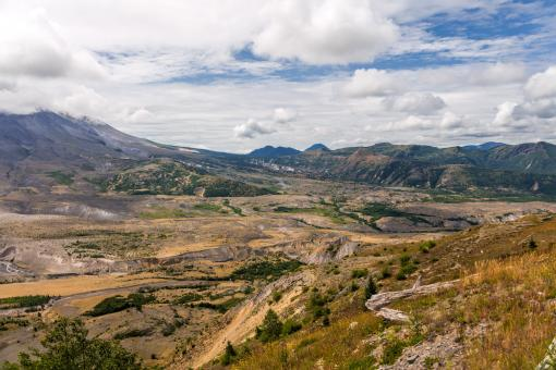 Free Stock Photo of Mt st Helens Destruction