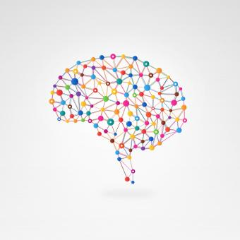 Free Stock Photo of  Brain Connections - Creativity and Intelligence Concept