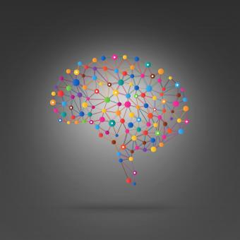 Free Stock Photo of Brain Connections - Creativity and Thought Concept