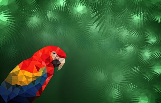 Free Stock Photo of Macaw in the Jungle with Copyspace