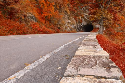 Free Stock Photo of Skyline Tunnel Drive - Ruby Autumn HDR