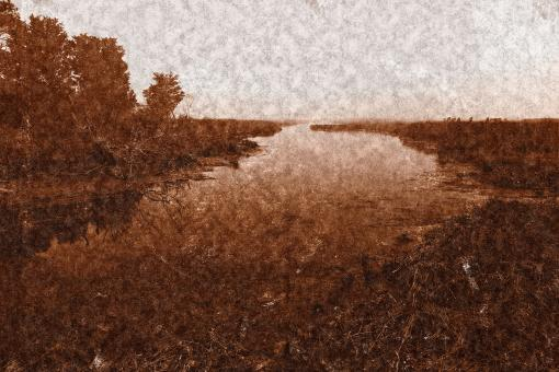 Free Stock Photo of Assateague Island Marsh - Sepia Nostalgia