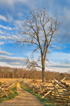 Free Stock Photo of Winding Gettysburg Trail - HDR