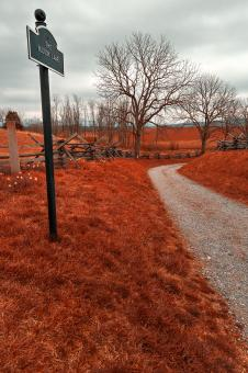 Free Stock Photo of Bloody Red Lane - HDR