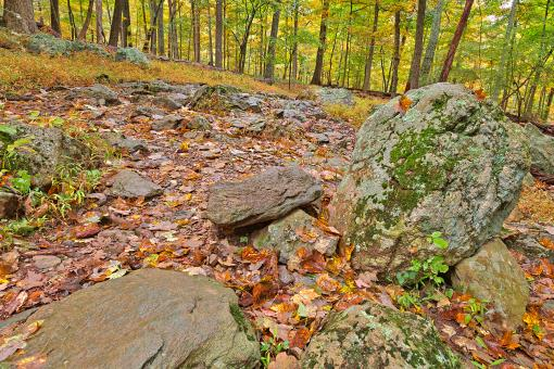Free Stock Photo of Catoctin Mountain Trail - HDR