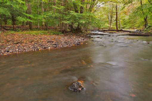 Free Stock Photo of Big Hunting Creek