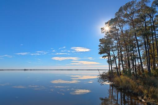 Free Stock Photo of Blackwater Sunburst Marsh - HDR