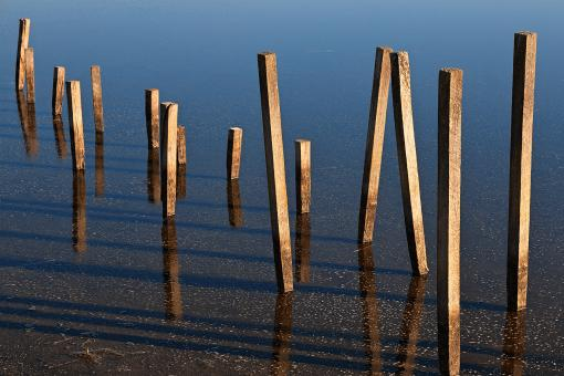 Free Stock Photo of Walking Water Stilts - HDR