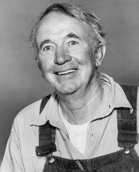 Free Stock Photo of Walter Brennan