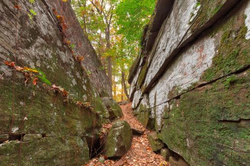 Free Stock Photo of Gettysburg Grotto - HDR