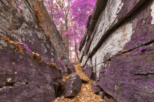 Free Stock Photo of Gettysburg Grotto - Lavender Fantasy HDR