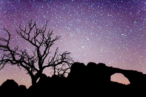 Free Stock Photo of Arches National Park