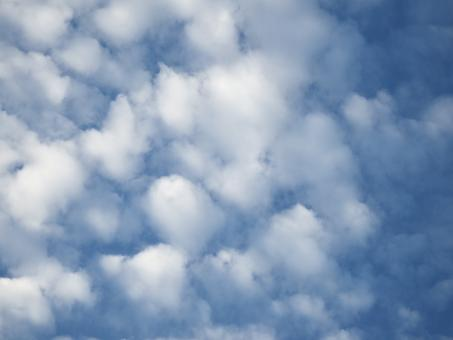 Free Stock Photo of Blue Sky and Fluffy White Clouds