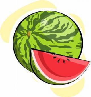 Free Stock Photo of Watermelon Vector Illustration