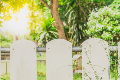 Free Stock Photo of Garden fence with the sunrise