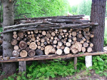 Free Stock Photo of Woodpile