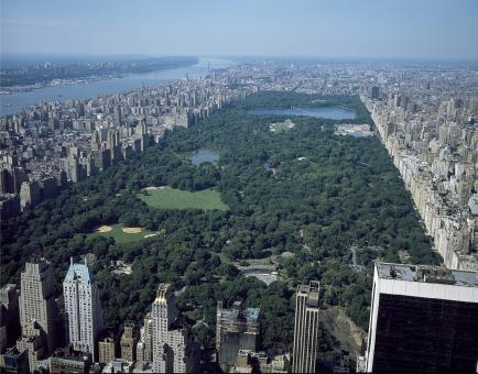 Free Stock Photo of Park in New York