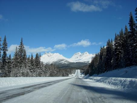Free Stock Photo of Icefields Parkway