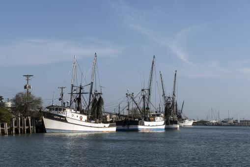 Free Stock Photo of Shrimp Boats