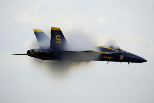 Free Stock Photo of Blue Angel