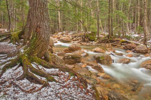 Free Stock Photo of Sabbaday Winter Brook - HDR