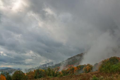 Free Stock Photo of Dolly Sods Mountain Fog - HDR
