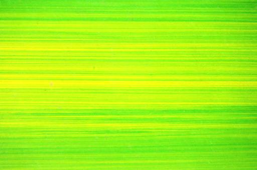 Free Stock Photo of Bright Green Lines Background