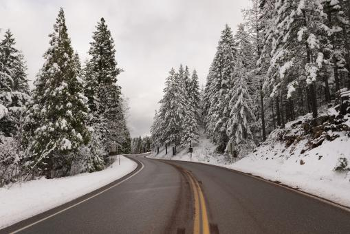 Free Stock Photo of Winter Road