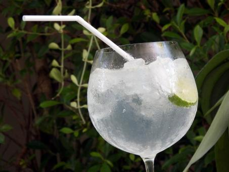 Free Stock Photo of Lime Cocktail in the garden