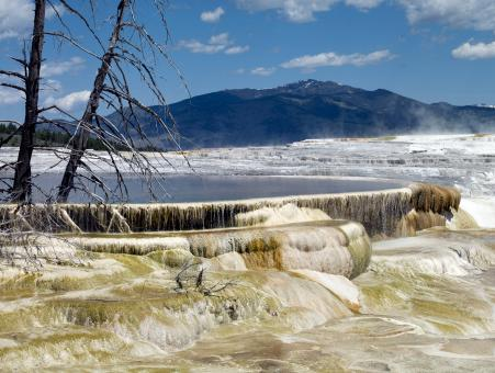 Free Stock Photo of Mammoth Hot Springs