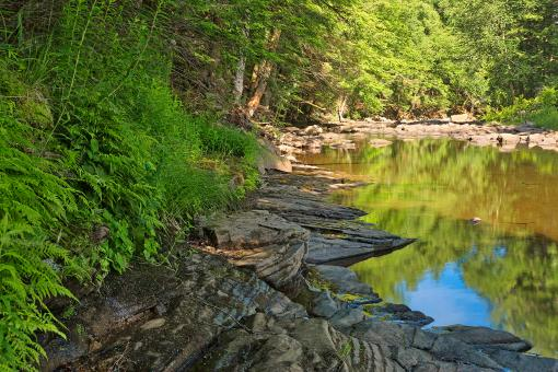 Free Stock Photo of Loyalsock Creek - HDR