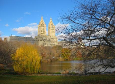 Free Stock Photo of Central Park