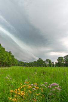 Free Stock Photo of Brewing Summer Storm - HDR