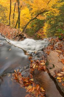 Free Stock Photo of Autumn Waterfall Precipice - HDR