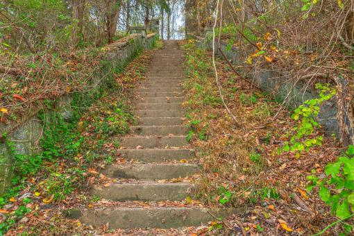 Free Stock Photo of Abandoned Autumn Stairway - HDR
