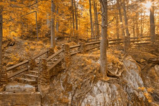 Free Stock Photo of Stairway to Neglected Enlightenment - Sepia Gold HDR