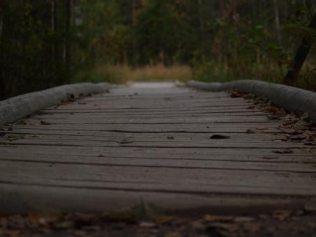 Free Stock Photo of Path with wooden bridge