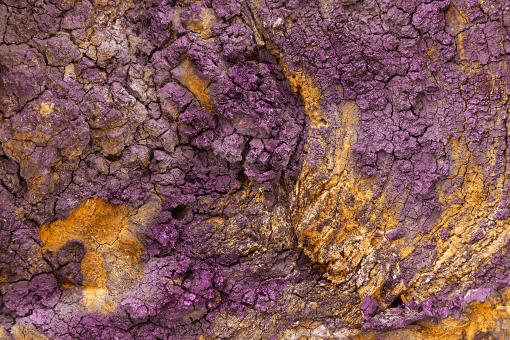Free Stock Photo of Charred Wood Texture - Purple Gold HDR