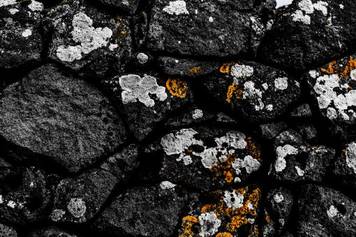Free Stock Photo of Old Stone Background With Lichen