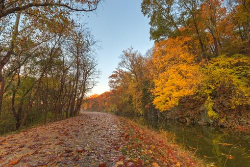 Free Stock Photo of Anglers Autumn Towpath - HDR