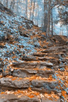 Free Stock Photo of Frosty Fall Staircase - HDR