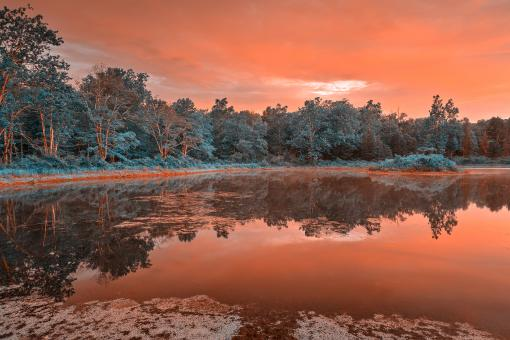 Free Stock Photo of Opalescent Twilight Marsh - HDR