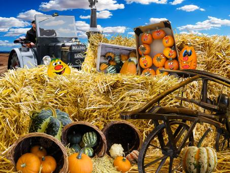 Free Stock Photo of Autumn Pumpkins and Hay Bales