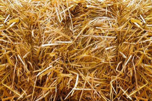 Free Stock Photo of Straw Bales