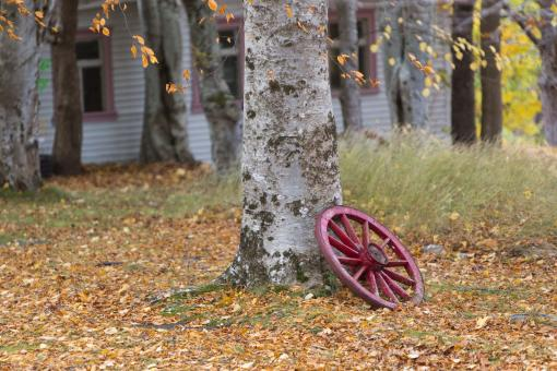 Free Stock Photo of Wagon wheel