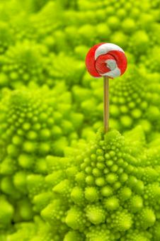 Free Stock Photo of Romanesco Lollipop - HDR