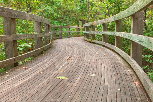 Free Stock Photo of Boardwalk Storybook Trail - HDR