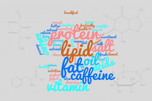 Free Stock Photo of Food components word cloud