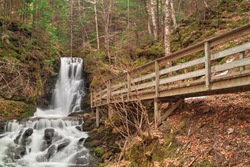 Free Stock Photo of Dickson Boardwalk Falls - HDR