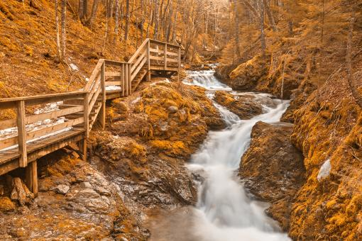Free Stock Photo of Gold Centipede Falls - HDR